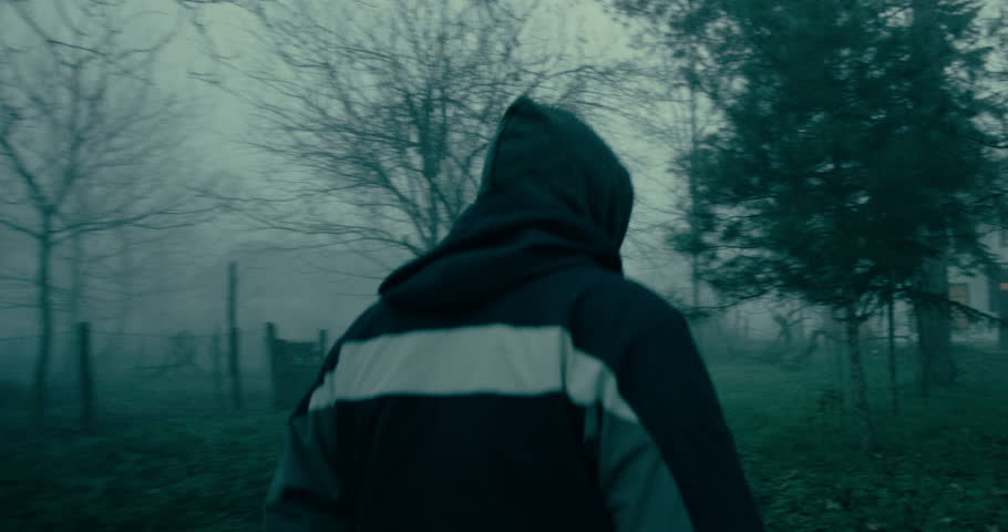 4k footage of camera on a steady cam moving in the mist fallowing a man through horrifying brunches.Man goes to a horrifying house.