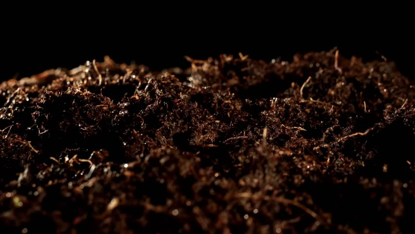 Soil definition meaning for Soil dictionary