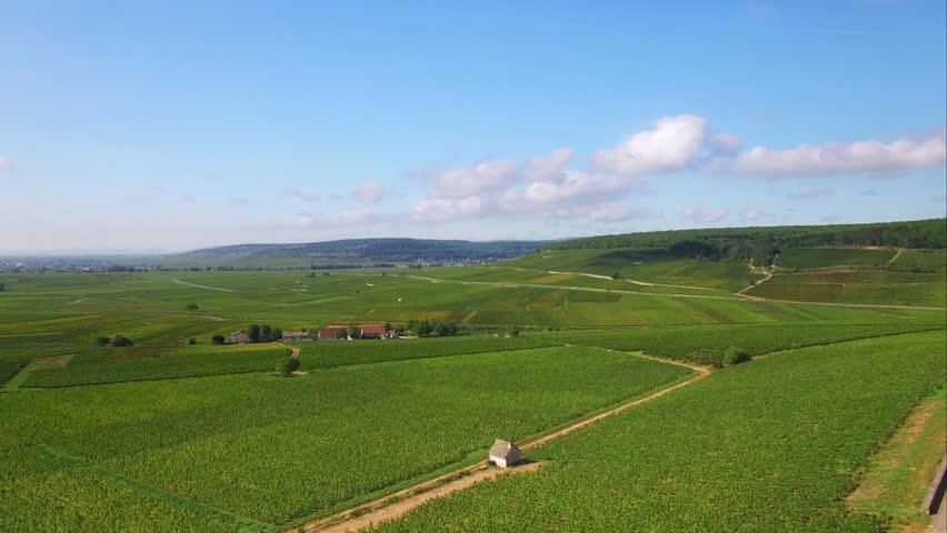 4K Campagne française, vue aérienne - French countryside aerial shot /Drone survolant des vignes en Bourgogne