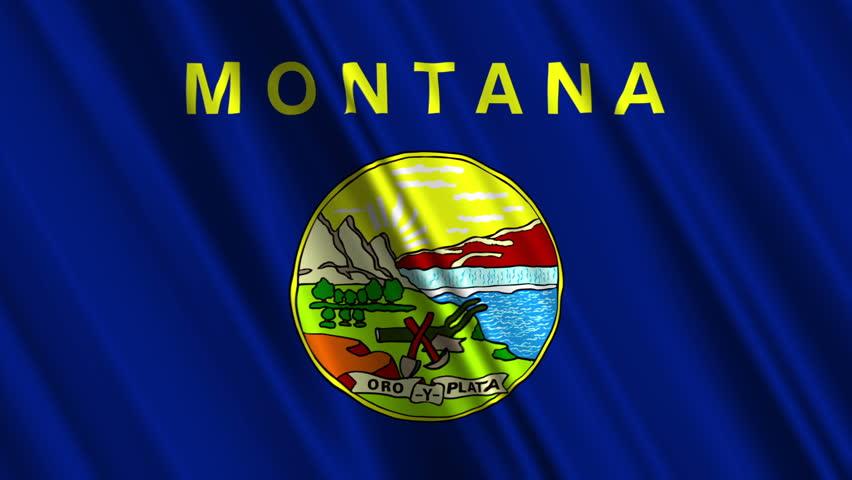 Montana Flag Loop 1 - HD stock footage clip