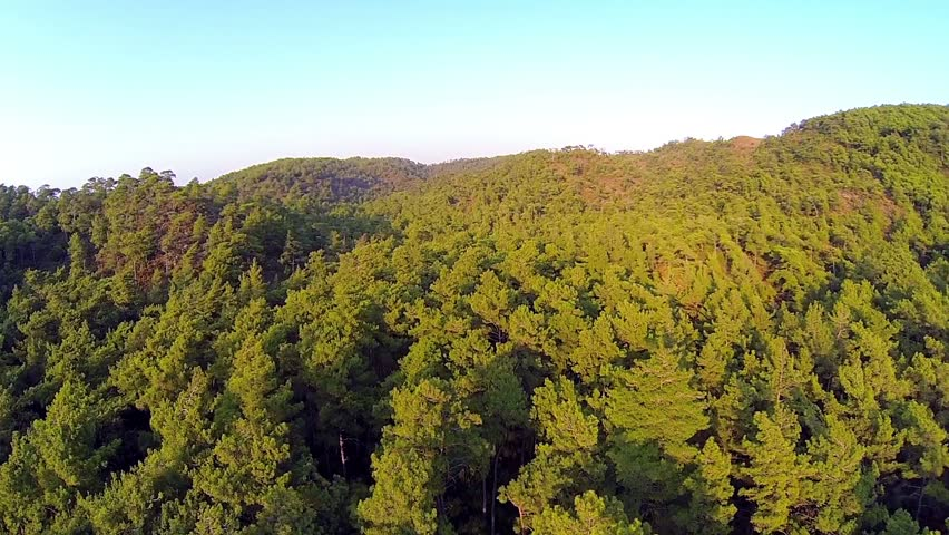 Helicopter shot of Mediterranean nature in the continental part, near Marmaris in Turkey. Beautiful dense forest at Marmaris in Turkey Country