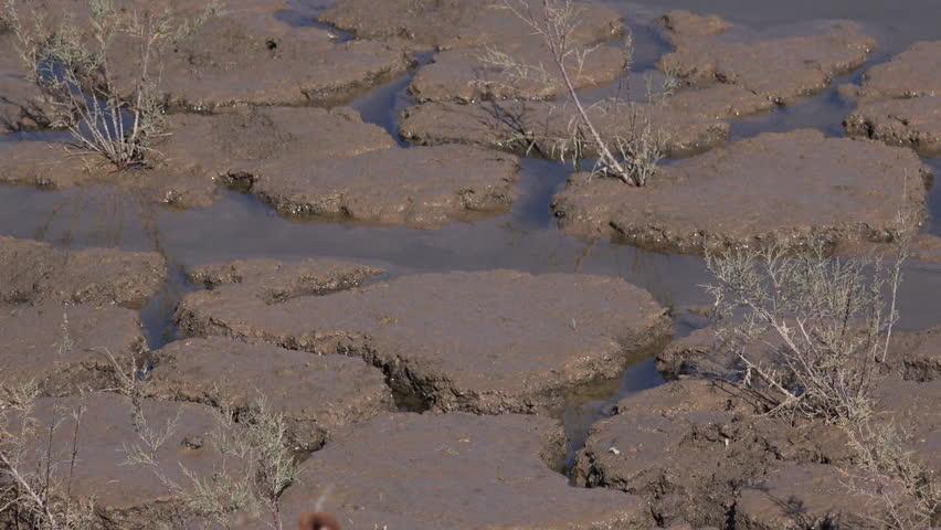 Mud slab definition meaning for Slab foundation definition