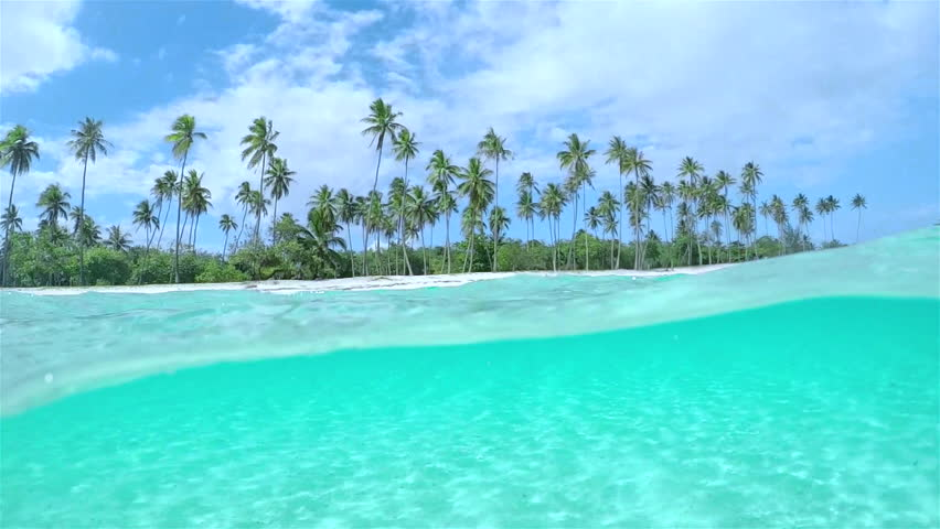 4K SLOW MOTION HALF UNDERWATER CLOSE UP: Beautiful tropical island with tall palm trees on white sandy exotic beach and amazing crystal clear blue ocean lagoon
