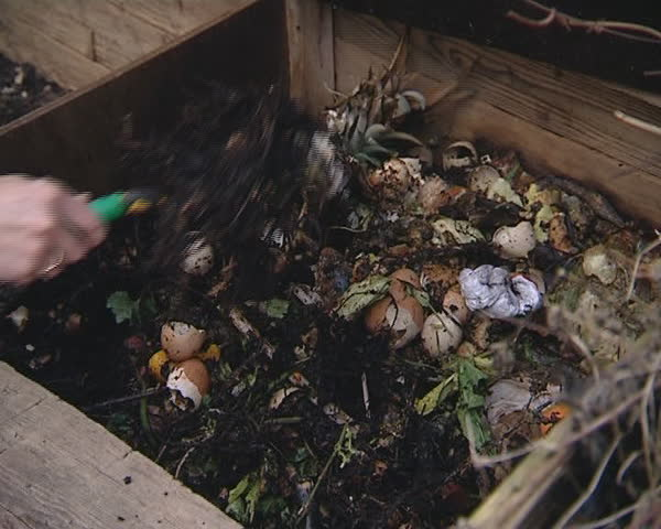 Compost, food waste and other in wooden compost box.