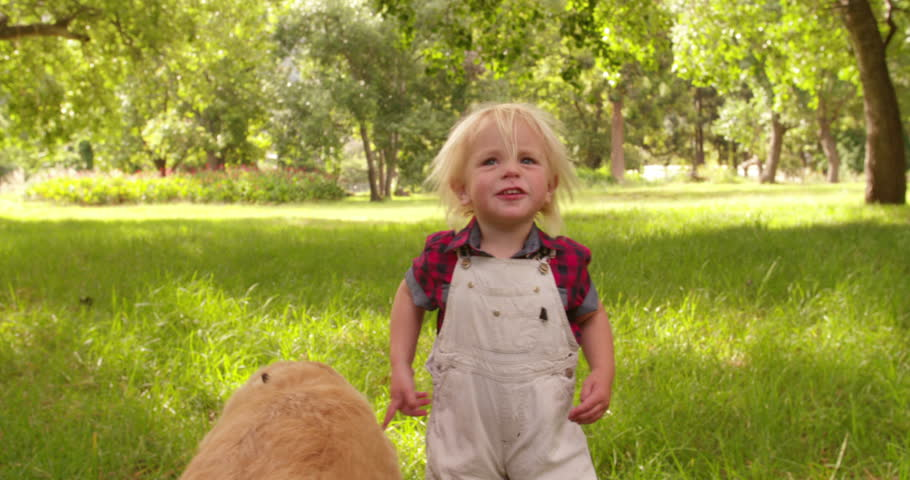 Cute blond preschooler child pets a labrador retriever dog at park - 4K stock footage clip