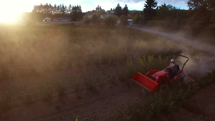 Farmer mowing dusty crops on tractor