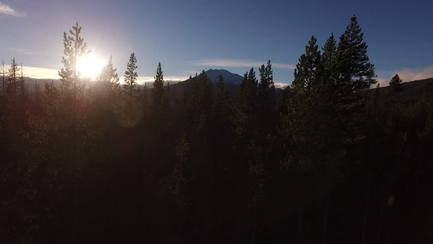 Aerial view of Oregon forest and Mt. Bachelor