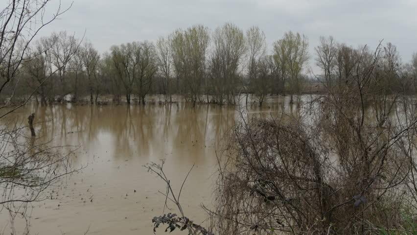 Swamp Natural Disasters