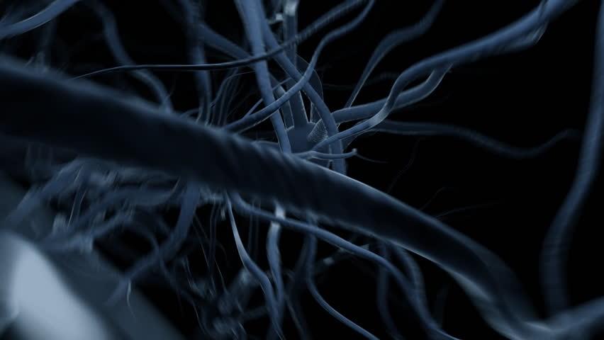 Fast flight through brain, seamless loop - HD stock video clip