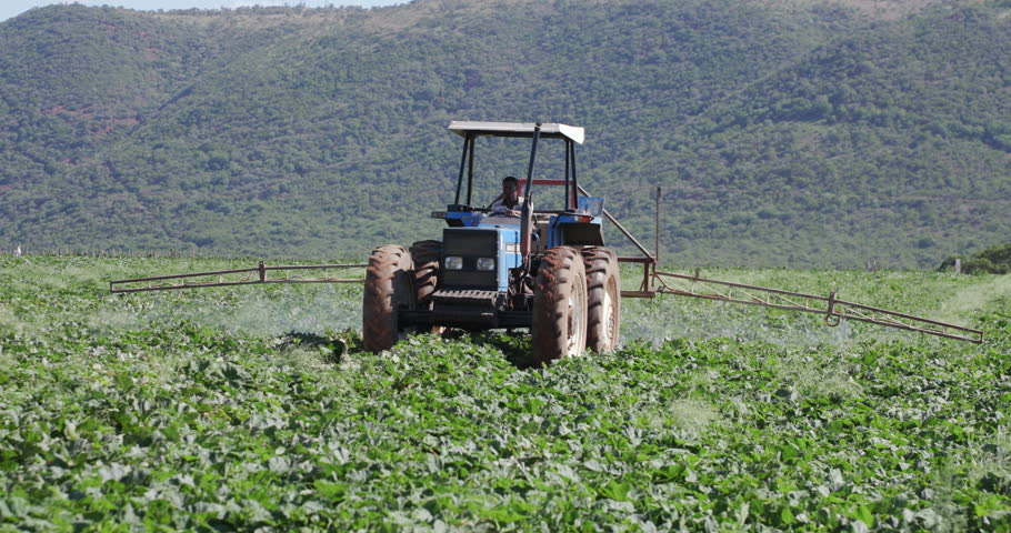 lucerne production guide south africa