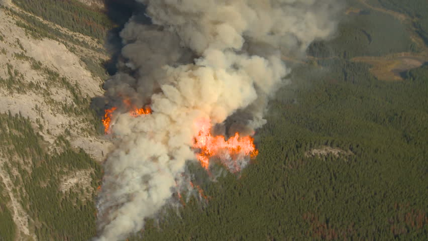 Forest fire big flames aerial spectacular - HD stock footage clip