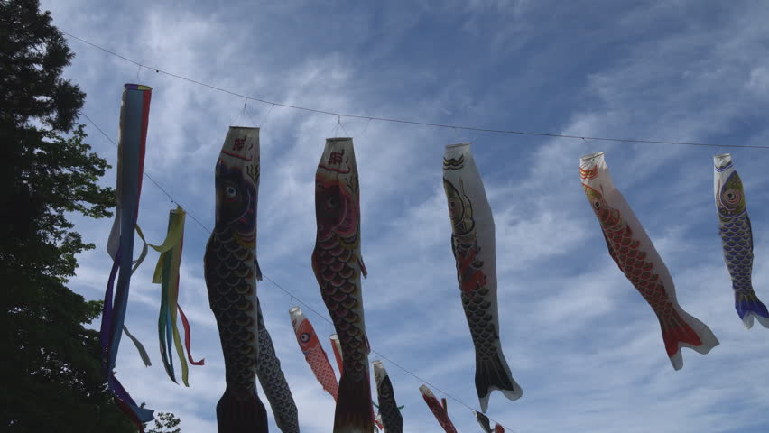 carp-shaped streamers called 'koi-nobori' to celebrate Japan's Children's Day, May 5th - HD stock video clip