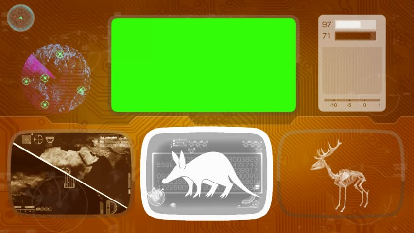 Header of aardvark