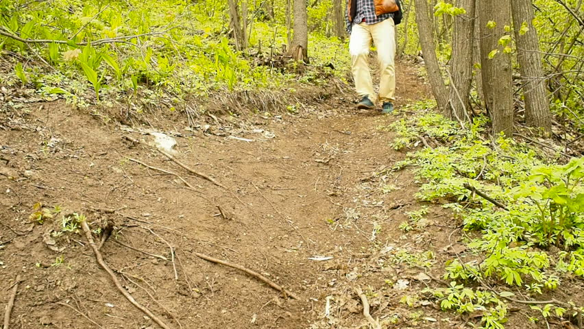 A man with a backpack walk downhill the forest trail .