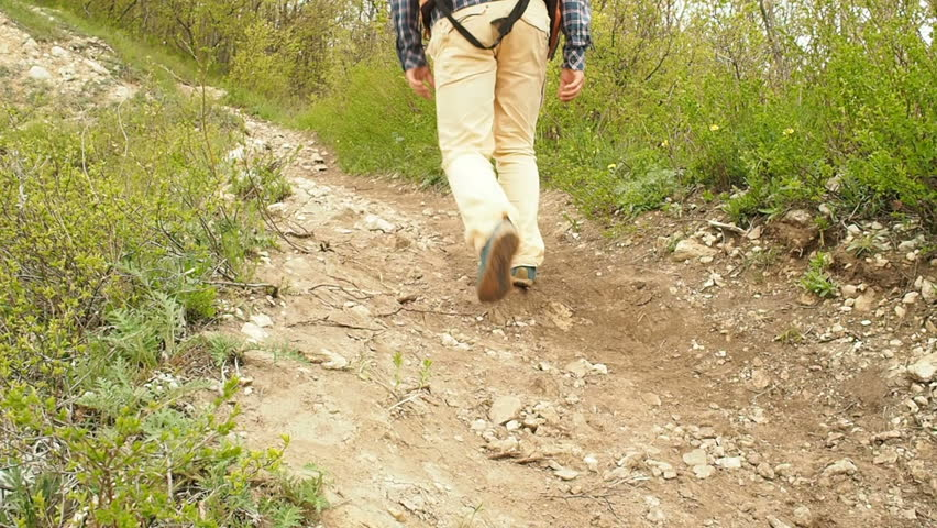 A man with a backpack walk uphill the forest trail .Hiking.