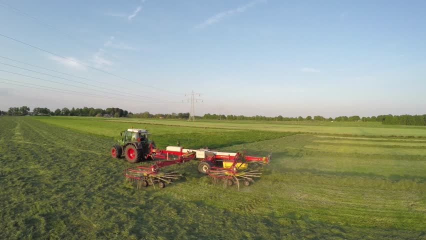 Aerial of tractor raking dried grass almost hay drone following low and close behind tractor and large grass rake showing dried grass piles in lines green field beautiful summer evening blue sky 4k