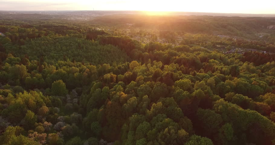 AERIAL. Beautiful smooth drone shot of sunset and forest (top of trees)