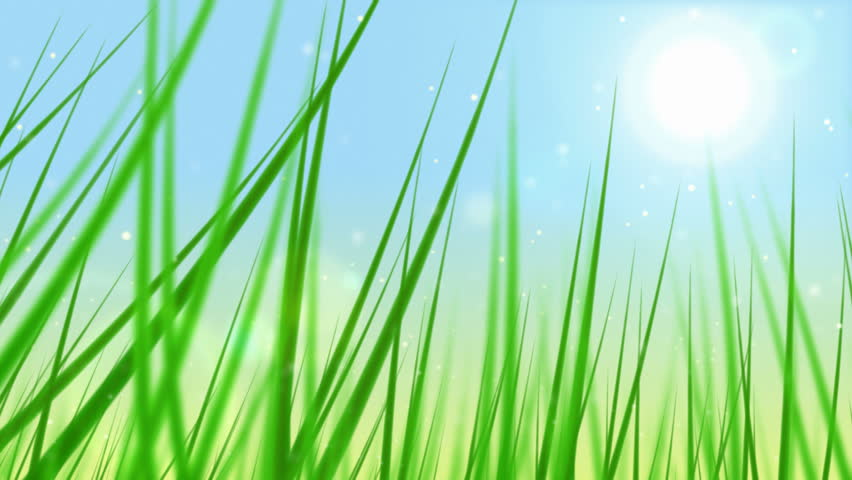 Loopable grass animation. - HD stock video clip