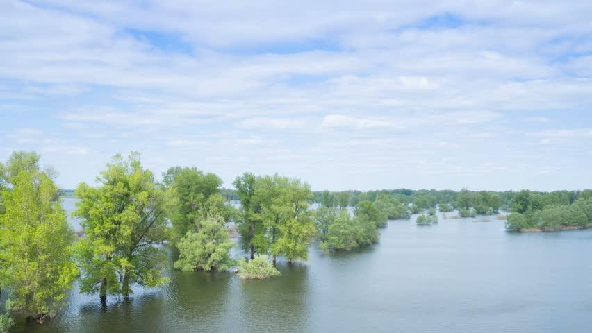 Flood river flow, spilled  forest trees after big thunderstorm. Nature disasters,catastrophe,rainstorm.time lapse
