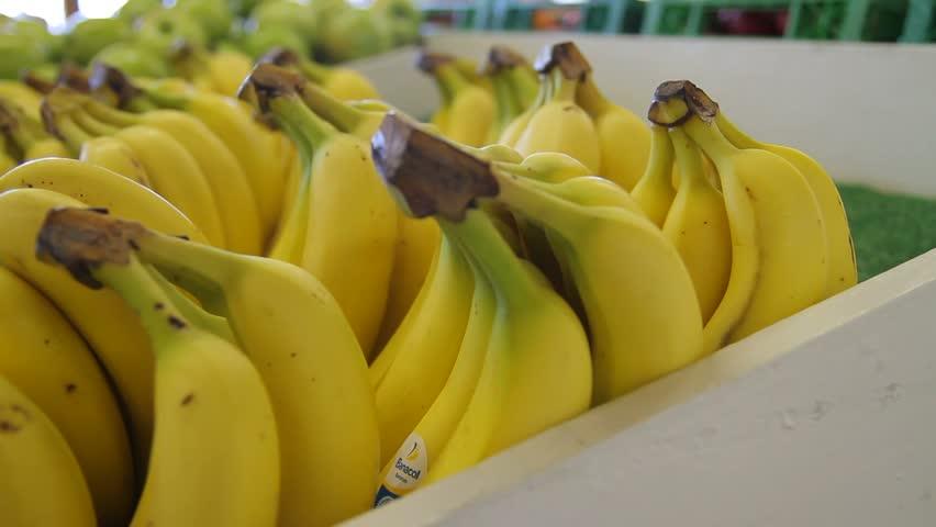 Bananas in farmer's market - HD stock video clip