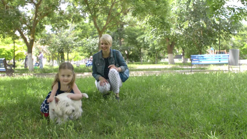 KHERSON, UKRAINE - JUNE 05, 2016: Little girl playing with dog on the grass - picnic in the park - HD stock footage clip