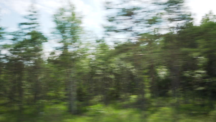 hd fast moving forest - photo #29