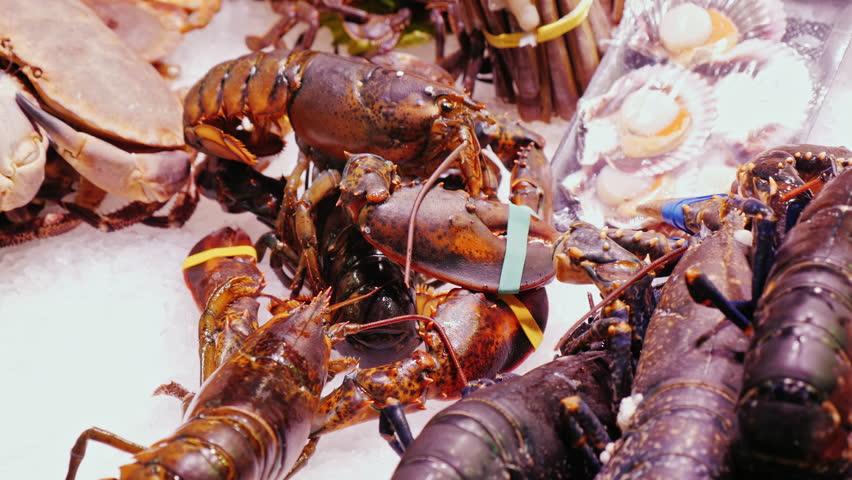 Live lobsters and crabs, stir claws. The famous la Boqueria market in Barcelona - 4K stock video clip