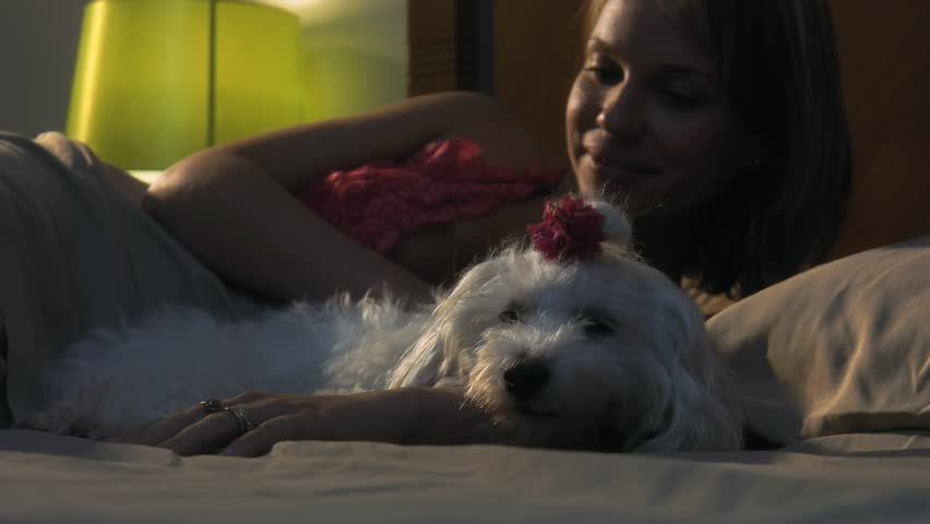 People and pets. Young woman lying in bed at night, relaxing and stroking her small dog. Medium shot - 4K stock footage clip