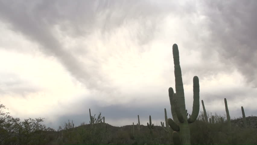 Time Lapse, Gray, swirling clouds swirl across Arizona saguaro cactus desert landscape. 1920x1080 - HD stock video clip