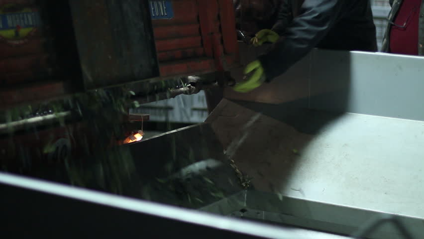 Oil mill - olive oil production - Series - HD stock footage clip