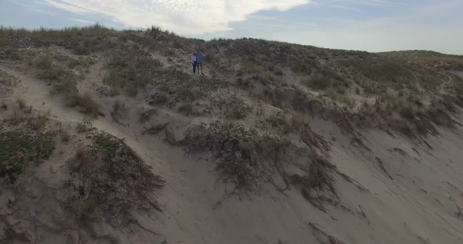Couple on the dune | Shutterstock HD Video #20541520