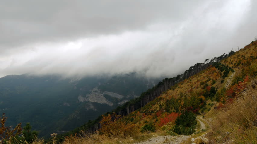 Thick clouds over mountains and autumn forest of red and yellow leaves on trees | Shutterstock HD Video #21135079