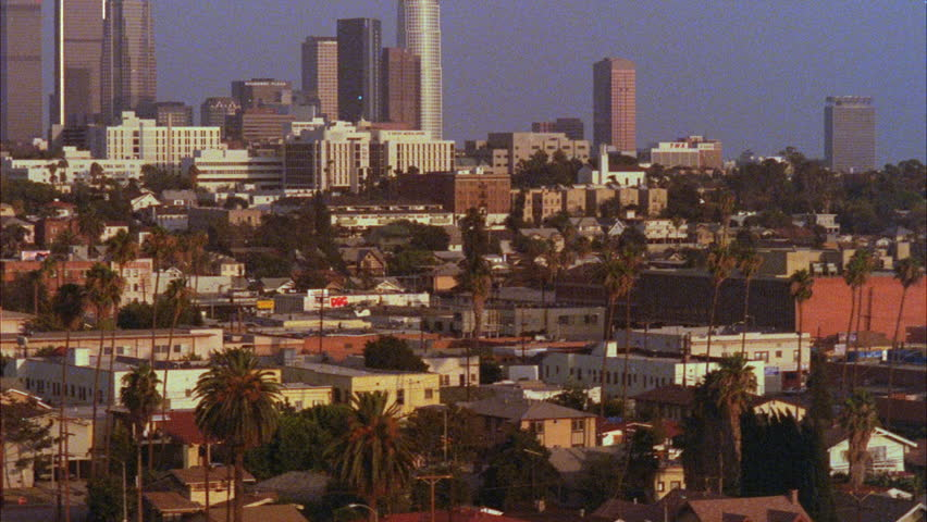 Day High angle Tilt up left residential neighborhood palms Los Angeles skyline downtown | Shutterstock HD Video #21328309