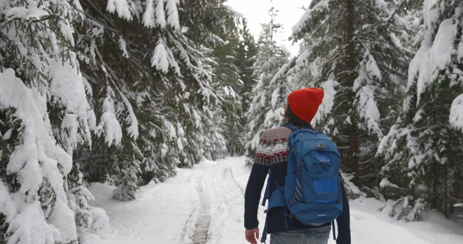 Man Hiker Walking Snow Winter Forest Traveler With Backpack Back Rear View Slow Motion 60 | Shutterstock HD Video #21826972
