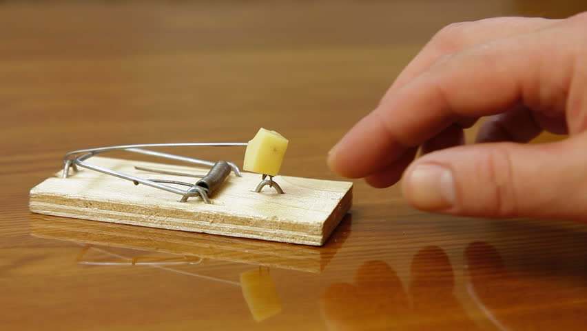 Hands Holding A Knife While Slicing Mushrooms On A Wooden ...