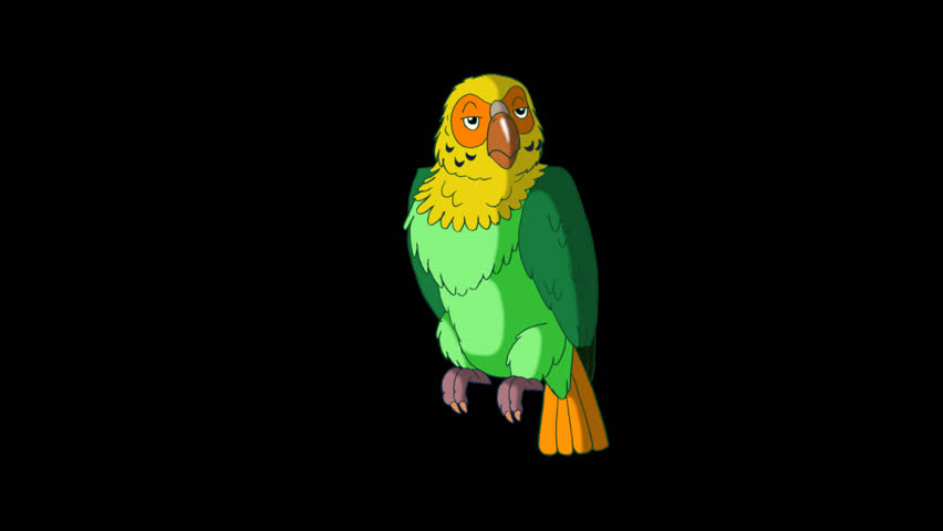 Green Parrot Wakes Up. Animated footage with alpha channel. Looped motion graphic. | Shutterstock HD Video #23184829