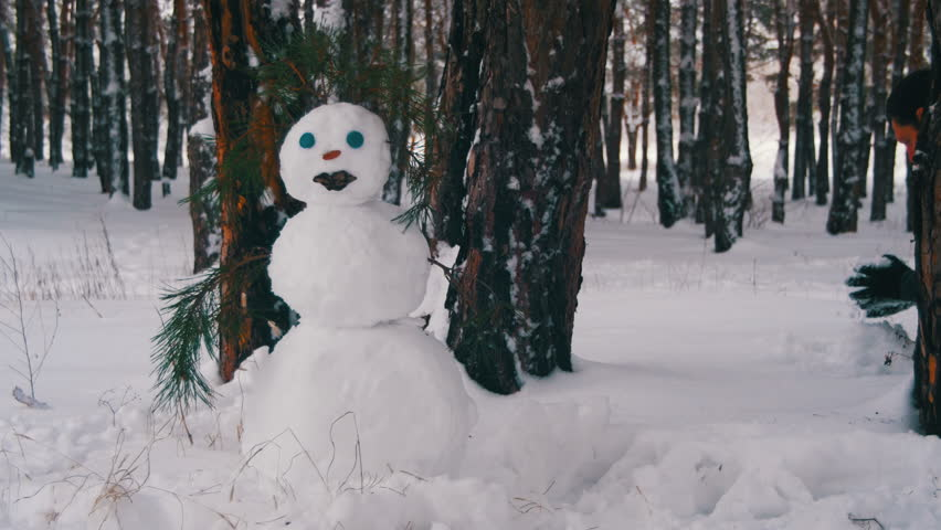 Man in the pine Forest Sculpts Snowman. Snowman in a Pine Forest Standing with Snow-covered Christmas Trees. Happy snowman stand in snowy forest with Snow-covered Christmas Trees. | Shutterstock HD Video #23196574