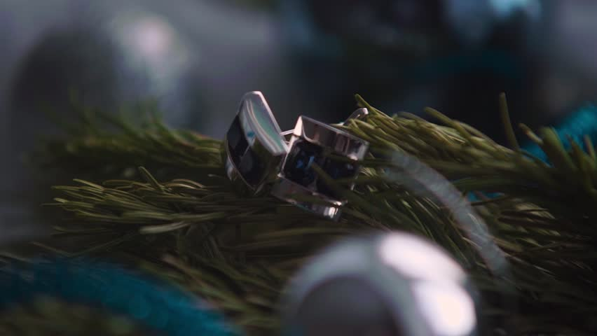 On branches of trees to eat men's cufflinks. Christmas balls | Shutterstock HD Video #24086998