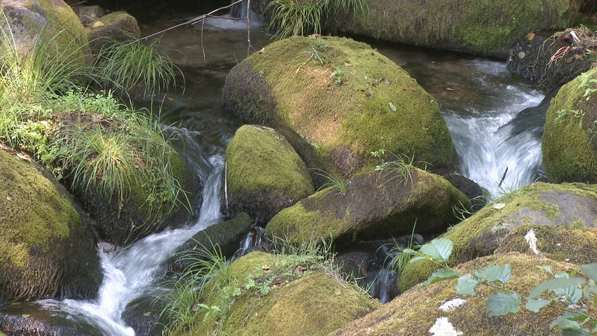 Beautiful small waterfall in forest - HD stock footage clip