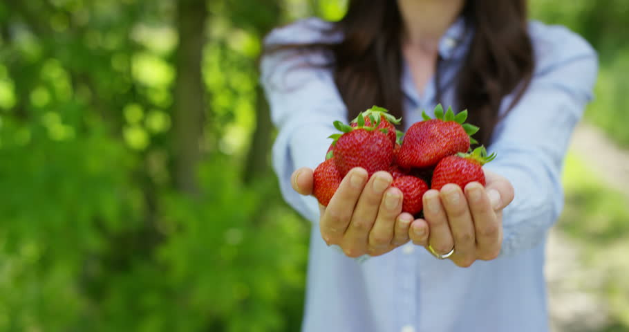 Beautiful young girl holding a clean strawberry in her hand, in the background of nature. Concept: biology, bio products, bio ecology, grow fruits, natural pure and fresh product, diet, healthy. #26641549