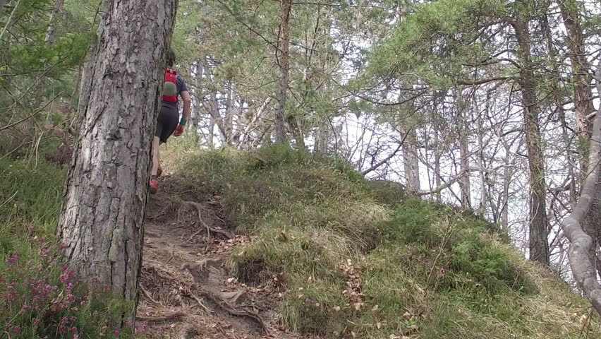 A man with sports equipment and sports clothing hiking at Mala Grmada, Polhograjski Dolomiti. Hiking with backpack on a footpath with root, through coniferous forest. SLO MO.  | Shutterstock HD Video #27174394
