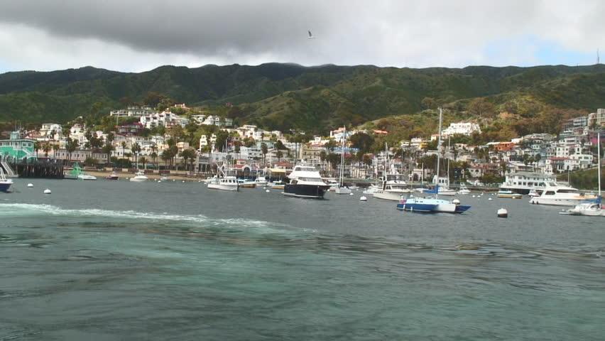 View of marina from catalina island ca stock footage for Catalina bay