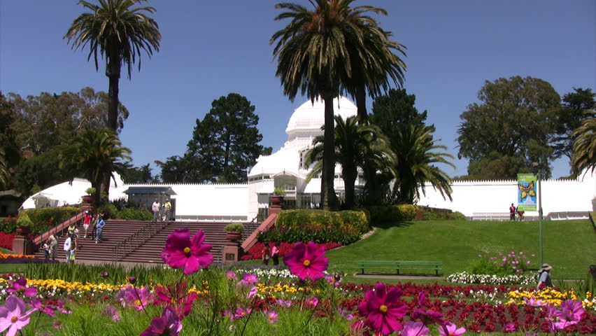 Conservatory of Flowers 08 - HD stock video clip