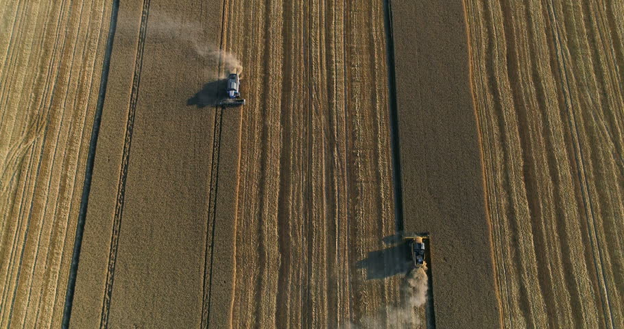 Aerial View. Collecting Of a Harvest Of Wheat | Shutterstock HD Video #28834426