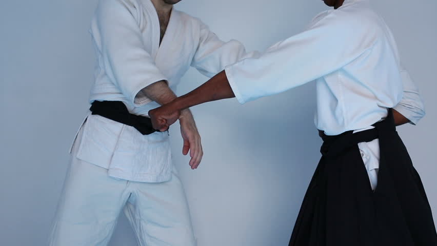 Martial arts practice on Aikido training | Shutterstock HD Video #29005174