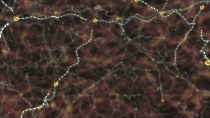 Video of damage to myelin sheath caused by multiple sclerosis, close up of inflammation on one neuron and action potential disruption of conduction due to the scarring - HD stock footage clip