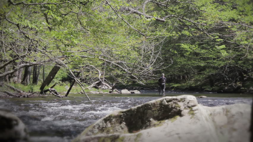 Fly fisherman fishing in a river in the great smoky for Fly fishing smoky mountains