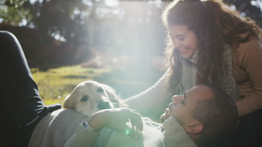 A man and a woman affectionately stroking their pet dog as they relax together outdoors and enjoy the early morning sunshine. In slow motion.
