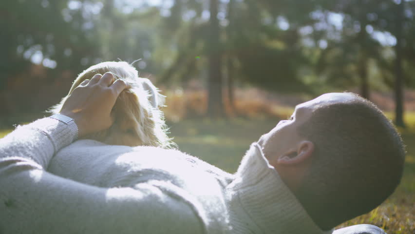 A man affectionately strokes his pet dog as they lay down together outdoors in the early morning sunshine. In slow motion. - HD stock footage clip