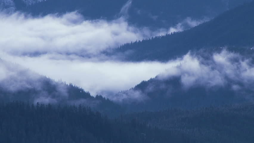 Time lapse of clouds rolling in and over thick, dense forest in the Pacific Northwest mountain range, blue filter. #3119671